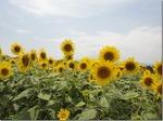 image/2011-08-16T14:03:55-1.jpg